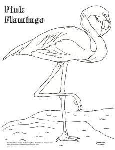 pink-flamingo-day