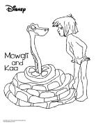 doodles-ave-jungle-book-mowgli-kaa