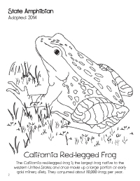 doodles-california-state-book-image-3